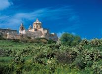 zeleň na Maltě